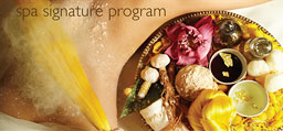 spa signature program